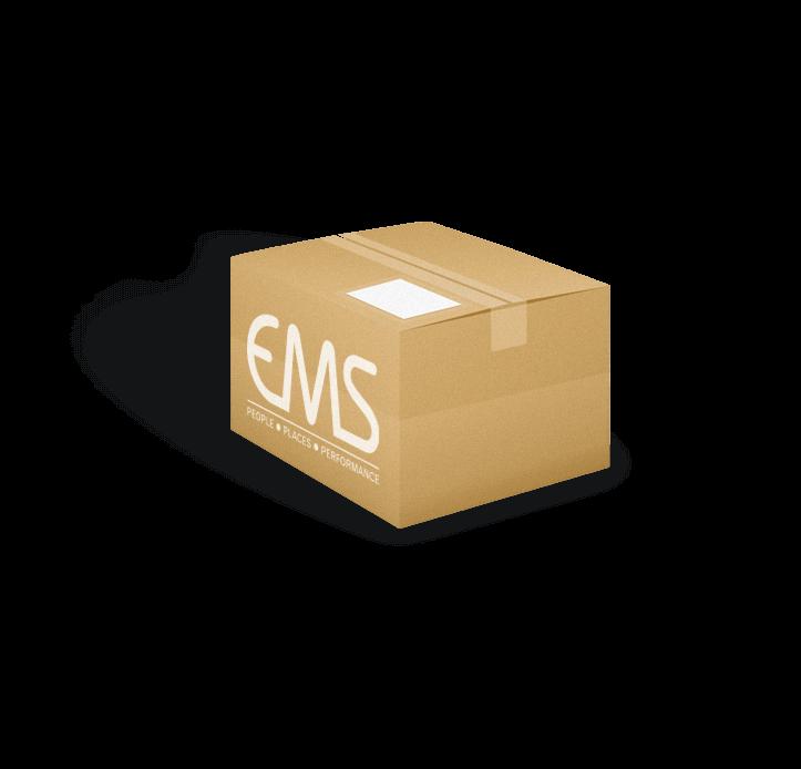 Above-Digital-Case-Study-Brief-EMS1