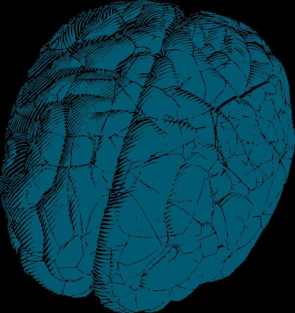 05 Above-Digital-Brain-IM