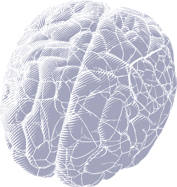 05 Above-Digital-Brain-FOS